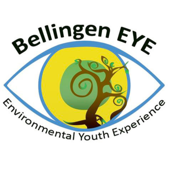 eye logo with text
