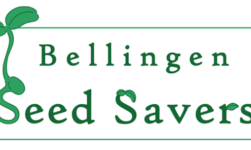Bellingen Seed Savers logo